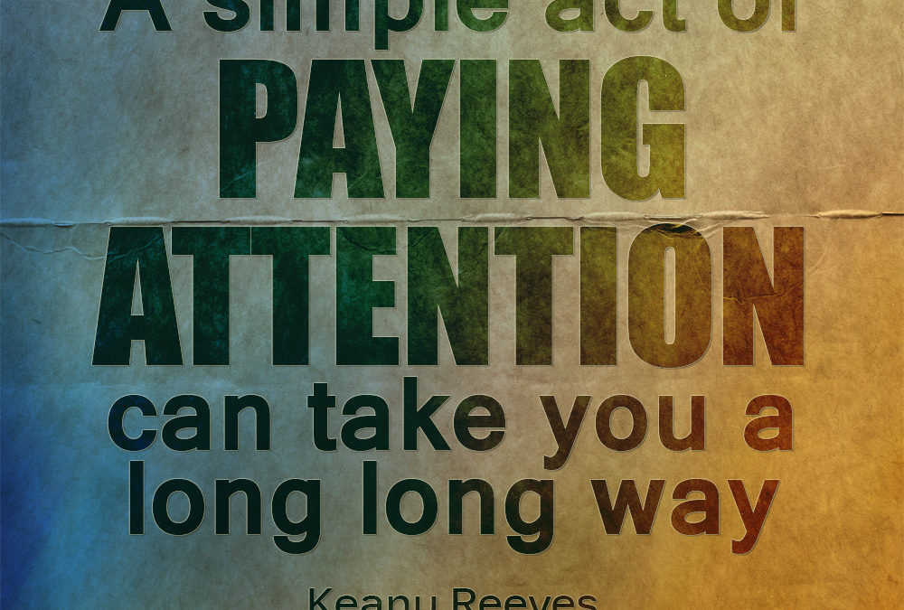What if we really paid attention?